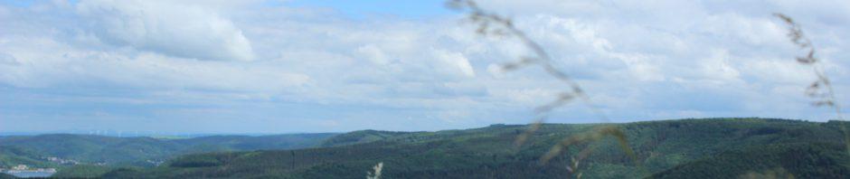 Rursee Reiten Eifel